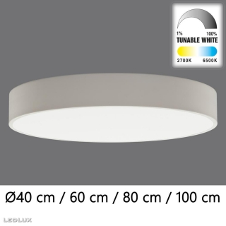 ACB Isia LED WHITE ceiling (TunableW Remote C)