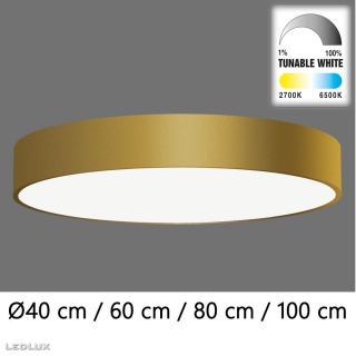 ACB Isia LED GOLD ceiling (TunableW Remote C)