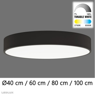 ACB Isia LED BLACK ceiling (TunableW Remote C)